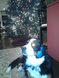 Dakota listening to tunes in front of the Christmas tree.